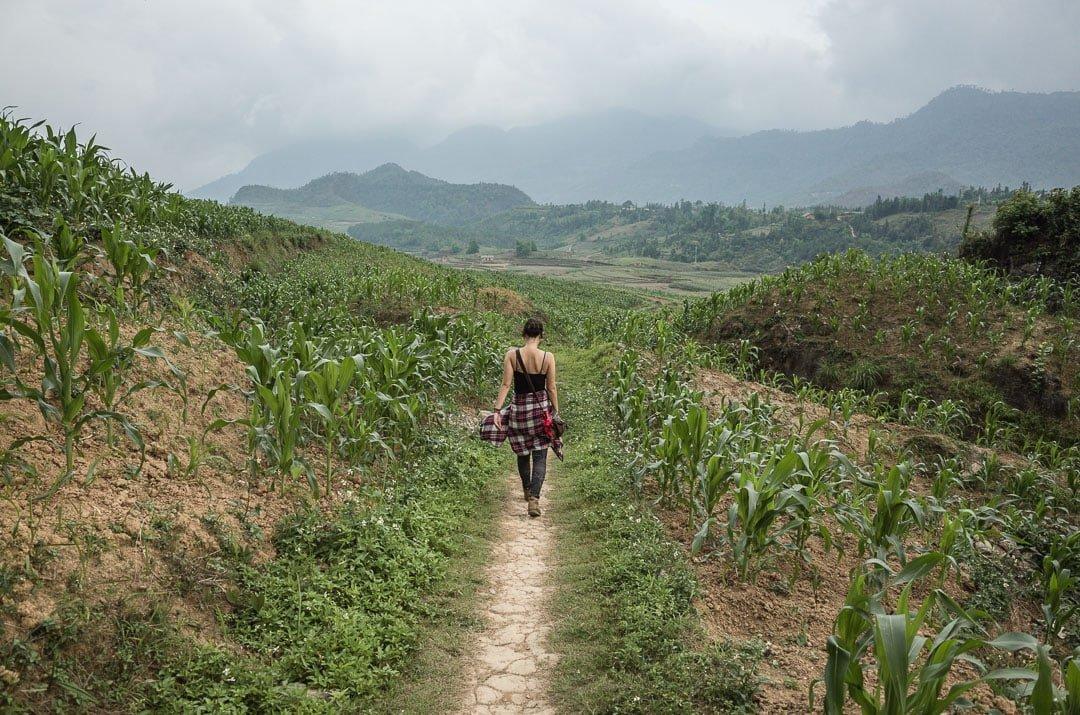 A woman wanders through corn fields near Nam Dam village in Ha Giang, Vietnam