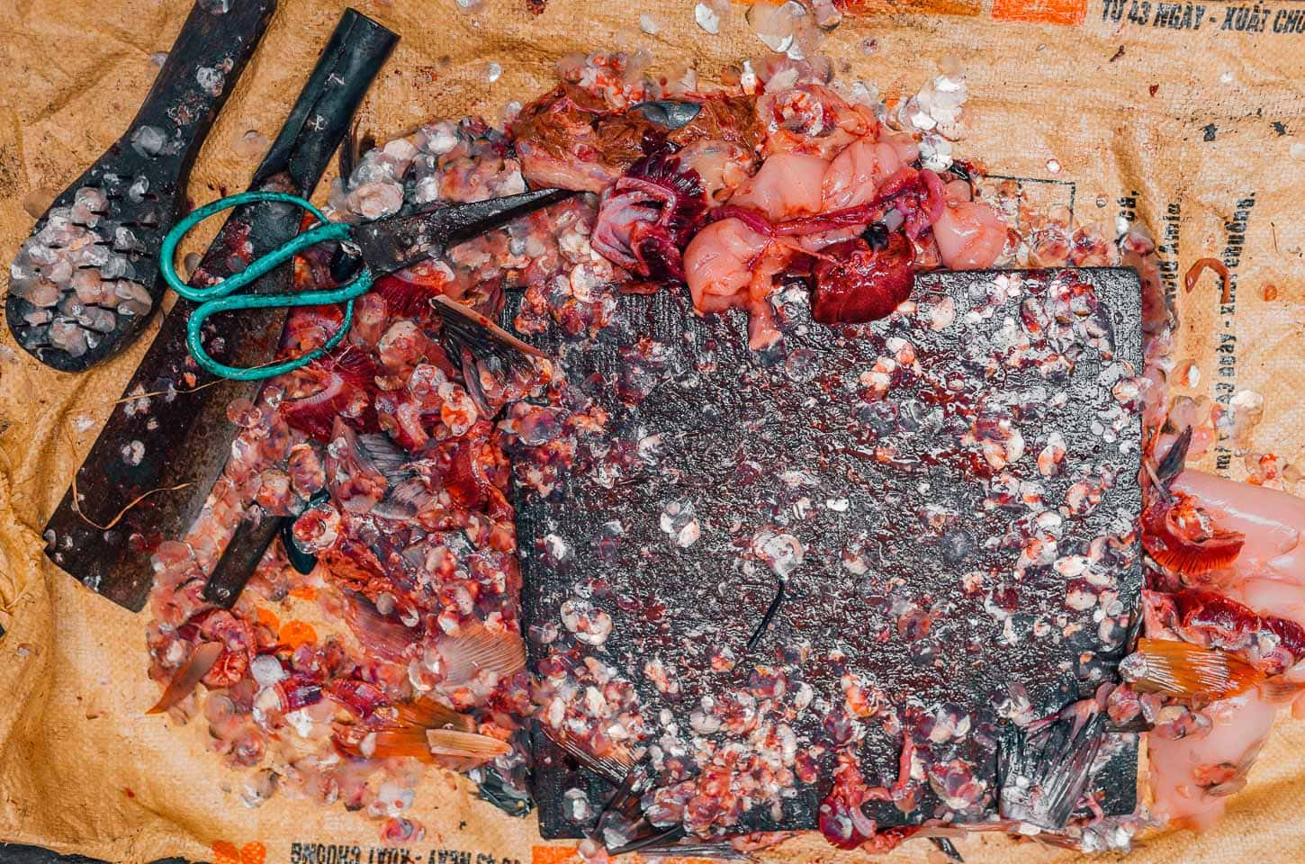 Fish guts and scales cover a wooden cutting board in Ba Dinh, Hanoi