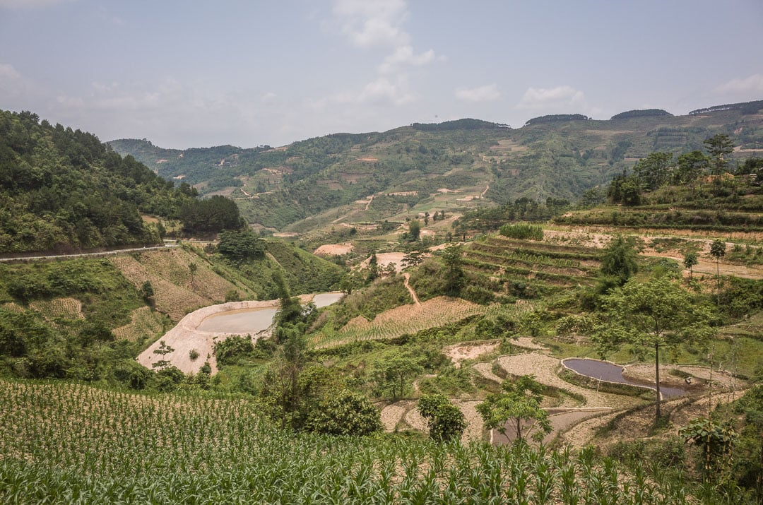 View of the green rice fields along the Ha Giang motorcycle loop in northern Vietnam