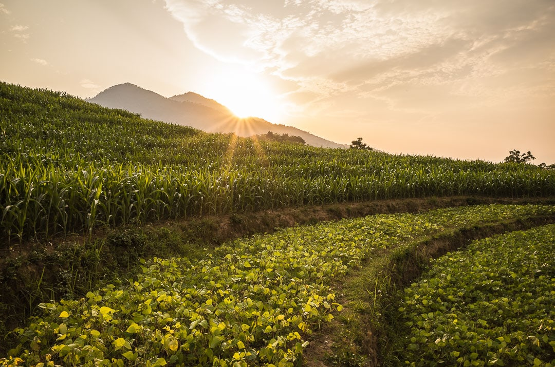 Sunset views over farmland in Ha Giang, Vietnam