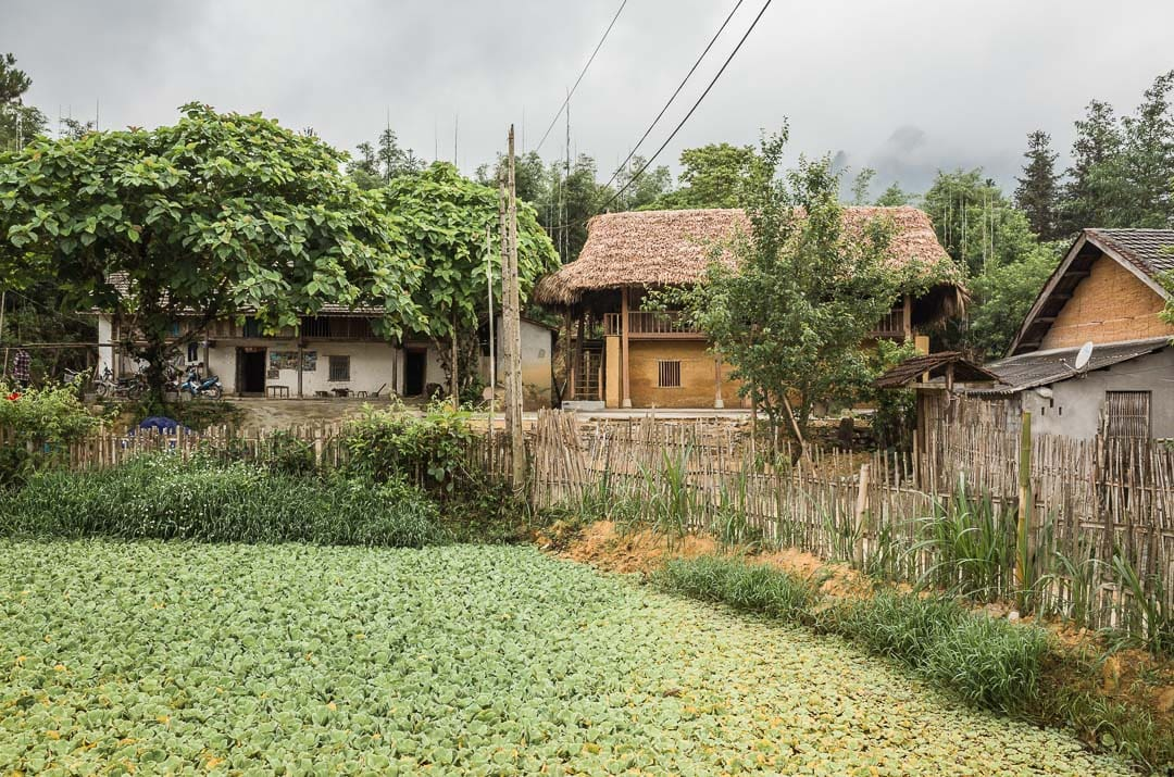 View of Ly Quoc Thang homestay from the garden area in Nam Dam village