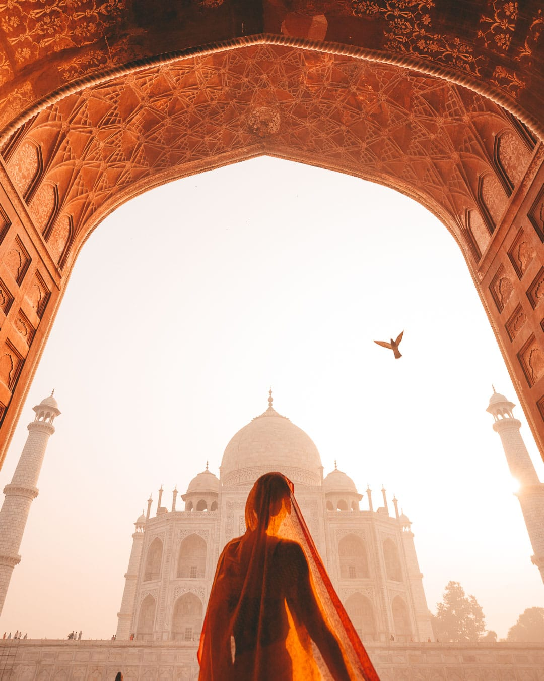 Sindhya wearing a saree at sunrise in the archway of the Taj Mahal mosque as a bird flies above.