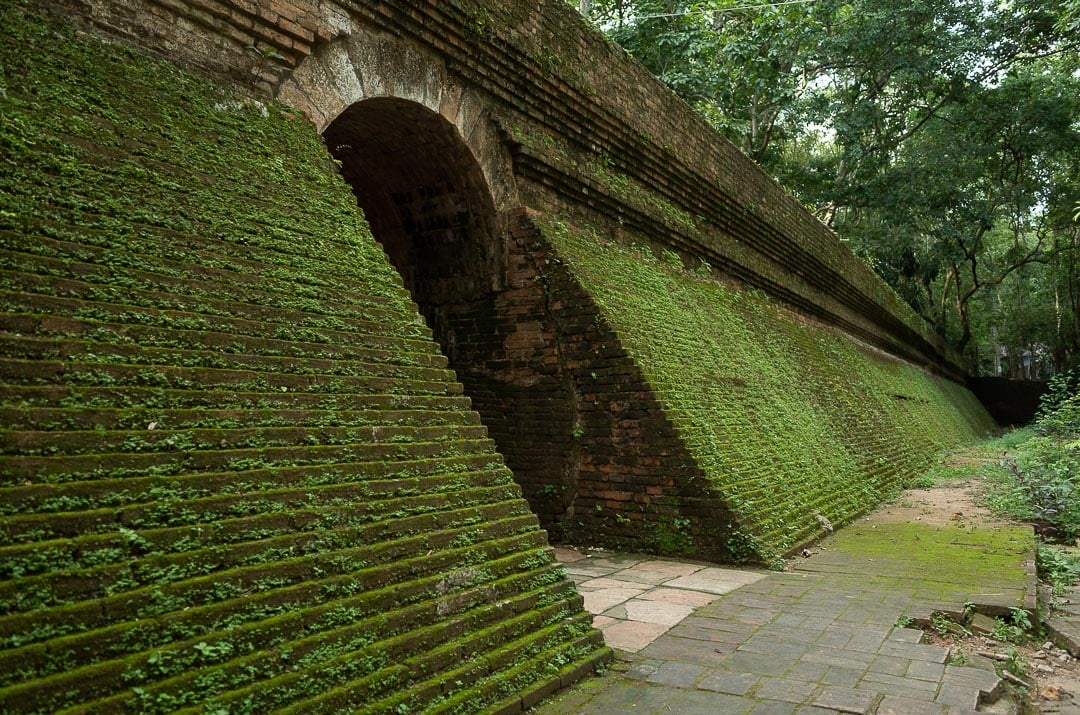 A tunnel covered in green moss at Wat Umong temple in Chiang Mai, Thailand