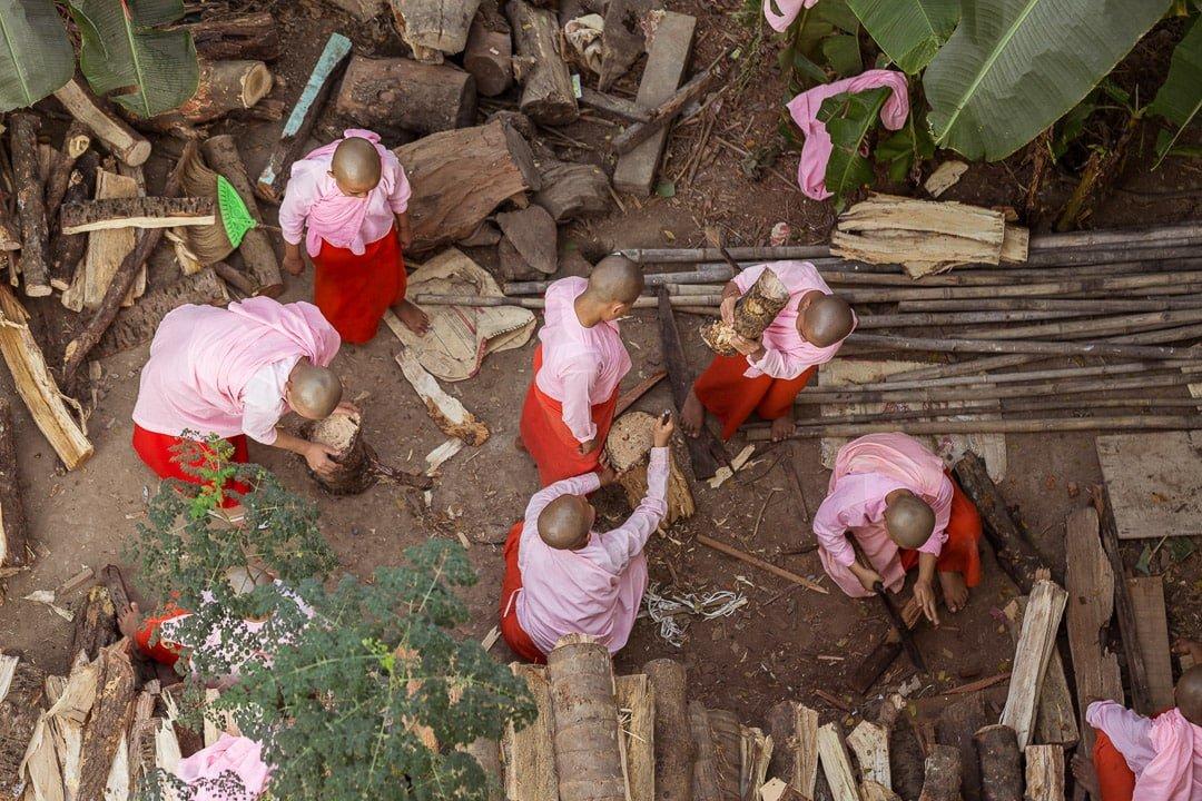 Buddhist nuns chopping and gathering wood.