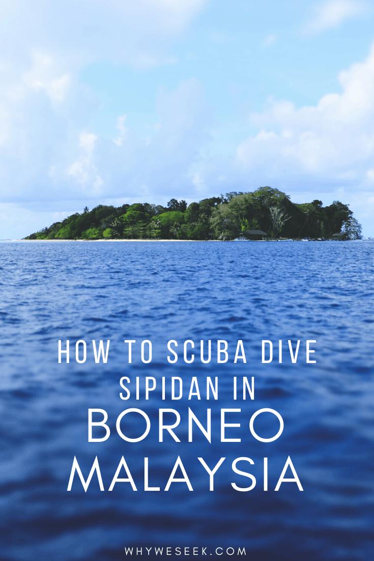 Scuba Diving Sipidan in Borneo, Malaysia // Why We Seek