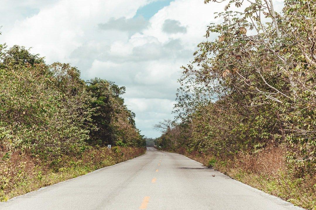 Ruta de los cenotes road