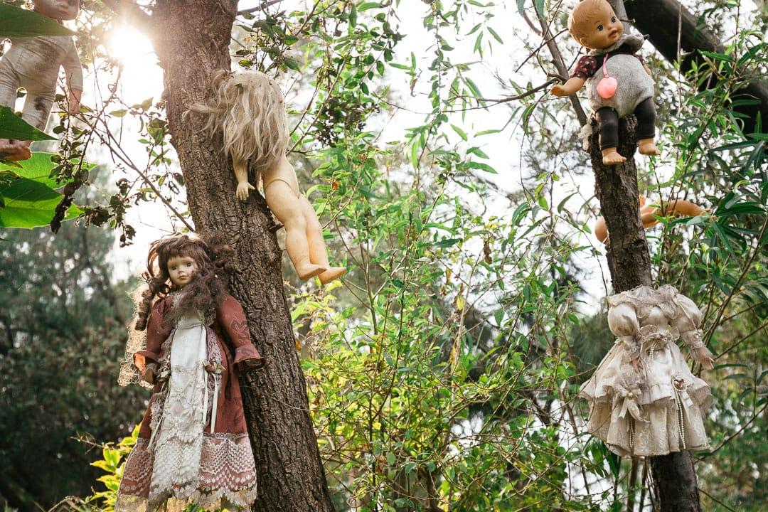 Hanging dolls in Xochimilco
