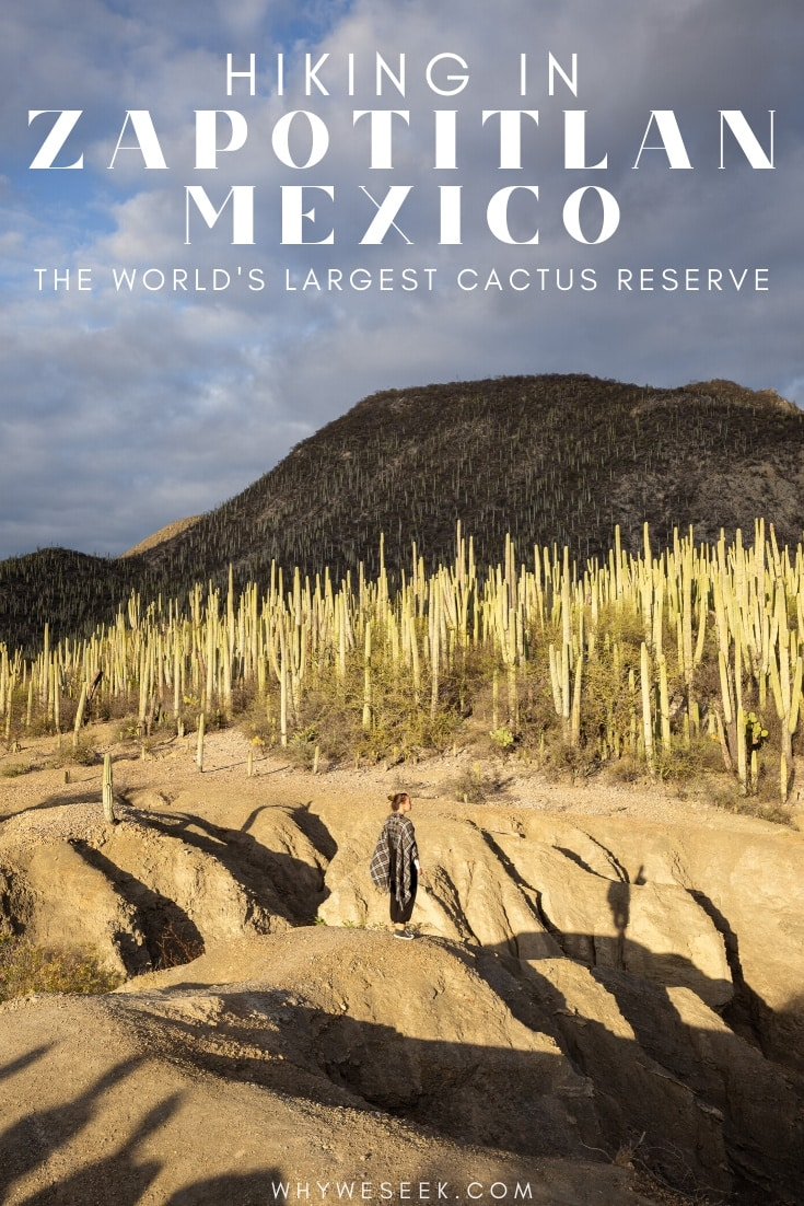 Hiking in Zapotitlan, Mexico at The World's Largest Cactus Reserve // Why We Seek